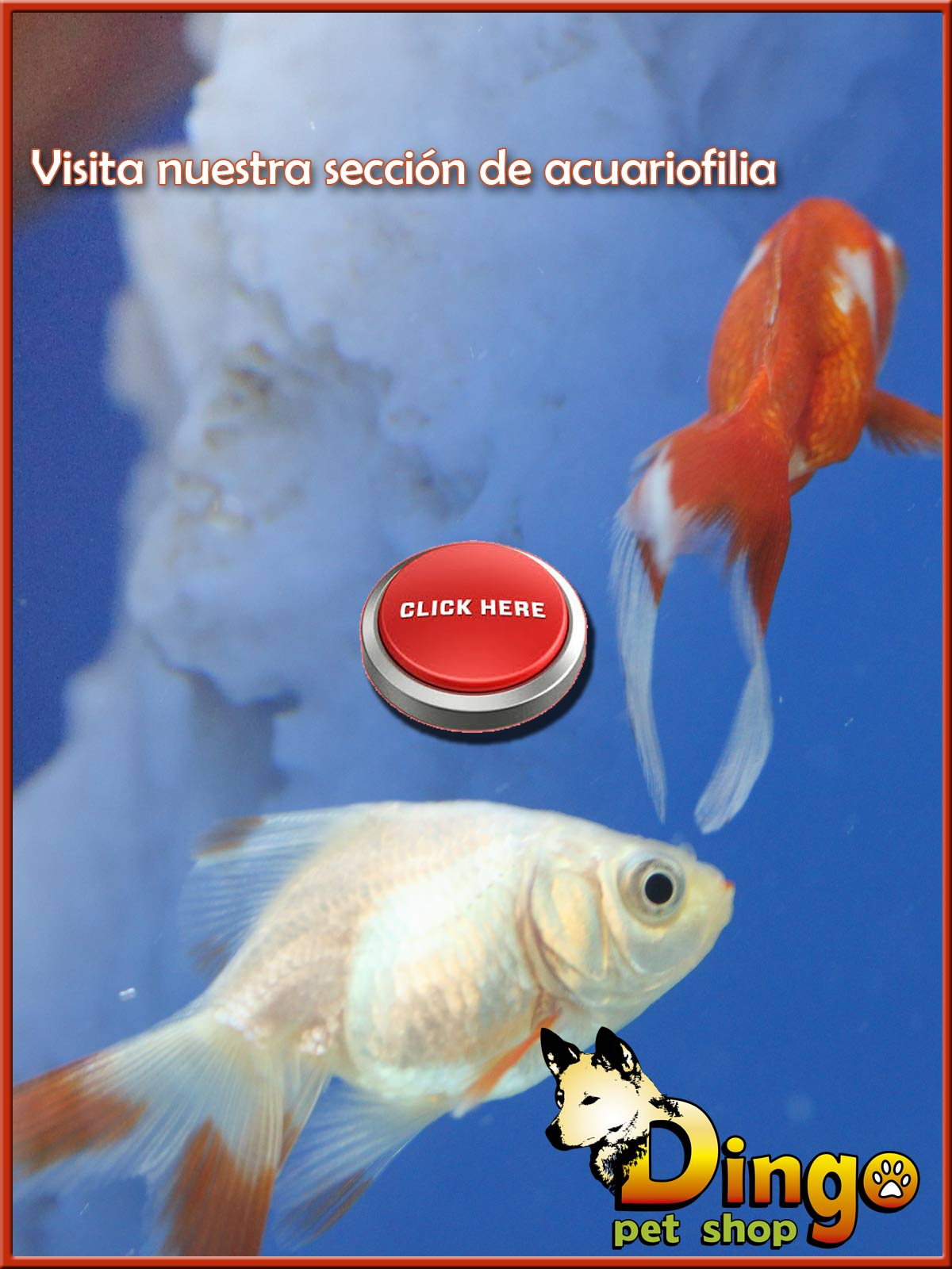 Peces-2015-lateral-blog